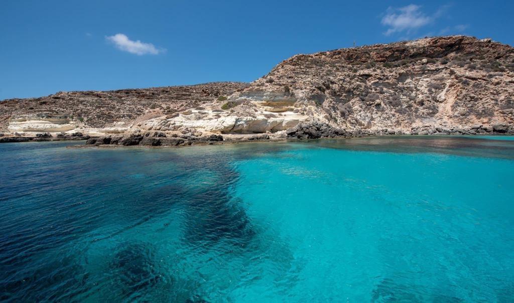 Il Gattopardo di Lampedusa